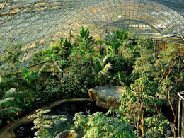 Ζωολογικός κήπος με φυσικά περιβάλλοντα