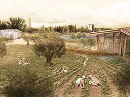 223.14 Αστικό καλλιεργητικό πάρκο στον Βοτανικό
