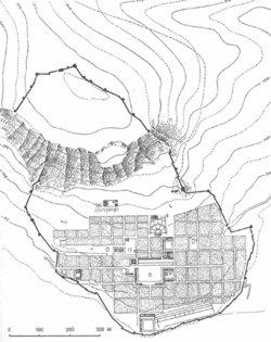 Ανιχνεύοντας τον κάναβο - Η περίπτωση των ιωνικών πόλεων