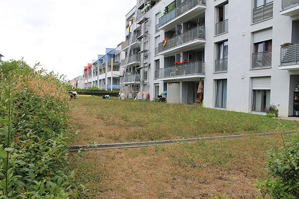 Δύο τοπία έξω από τη Στουτγκάρδη εικ 28