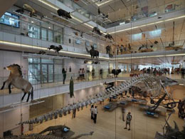 H Climaveneta σε έργο του Renzo Piano