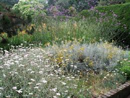 Μεσογειακοί κήποι