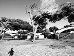 Κατοικία La Ricarda