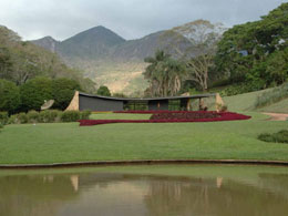 Roberto Burle Marx: The Marvellous Art of Landscape Design